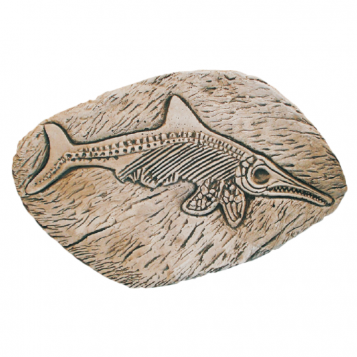Fossil Fish 45cm wall ornament statue outdoor garden